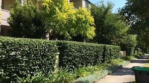 Gardening Services Sydney