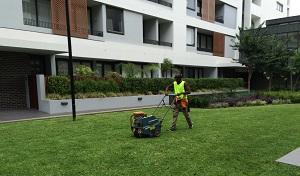 Garden Maintenance Sydney Lawn Mowing Services